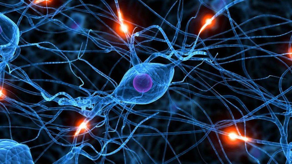 nerve 1024x576 - Лечение заболеваний нервной системы